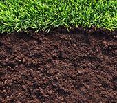 почвогрунт для газона