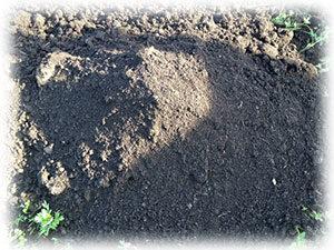 Купить плодородный грунт, почвогрунт, торф с доставкой во Внуково