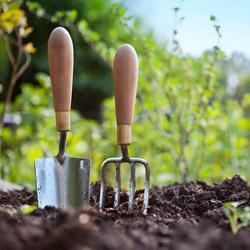 удобрение для почвы весной